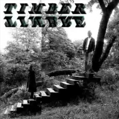 'Demon Host' by Timber Timbre